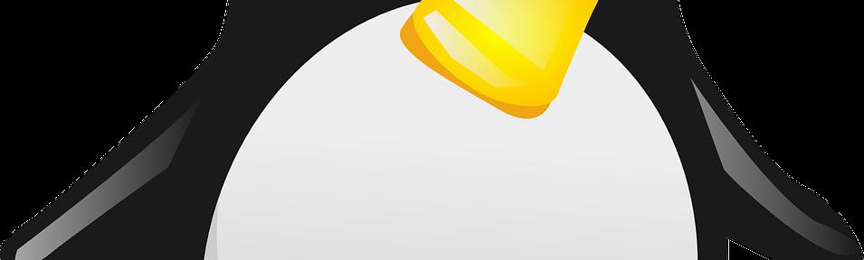 Update BIOS от Линукс машина